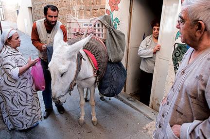 Mardin'de Dar Sokakların Yegane Taşıtı